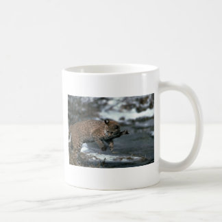 Bobcat rubbing on stick by snowy pond coffee mug