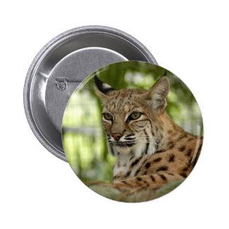 BobcatBCR032 6 Cm Round Badge