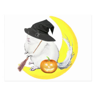 Bobo the chinchilla halloonween witch post cards