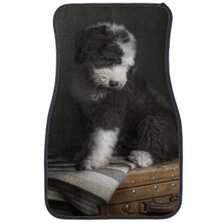 Bobtail puppy portrait in studio car mat