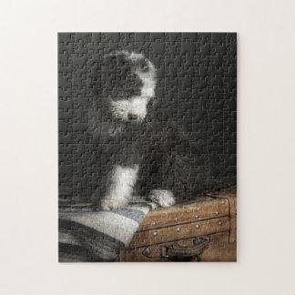 Bobtail puppy portrait in studio jigsaw puzzle