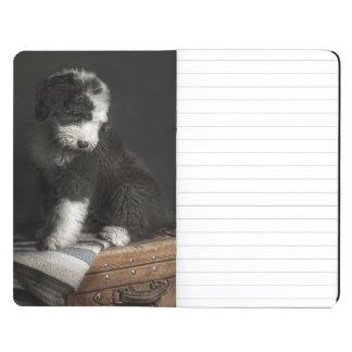 Bobtail puppy portrait in studio journals