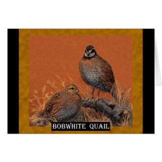 Bobwhite Quail (Georgia, Missouri and Tennessee) Card