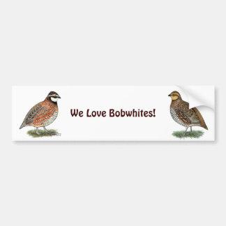 Bobwhite Quail Rooster Car Bumper Sticker