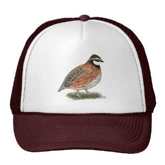 Bobwhite Quail Rooster Cap