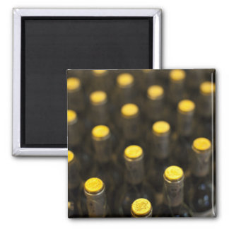 Bodega Marques de Riscal winery, wine bottles Magnets