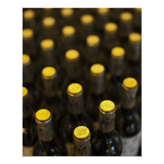 Bodega Marques de Riscal winery, wine bottles Poster