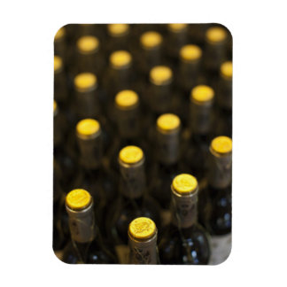 Bodega Marques de Riscal winery, wine bottles Magnet