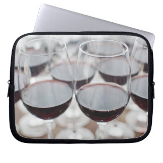 Bodega Marques de Riscal winery, wine tasting 3 Laptop Sleeve