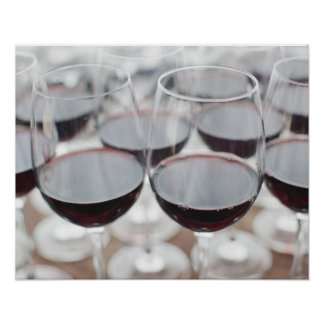 Bodega Marques de Riscal winery wine tasting 3 Print