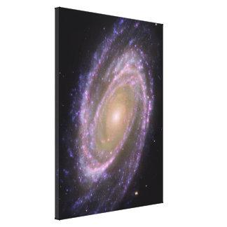 Bode's Galaxy Gallery Wrap Canvas