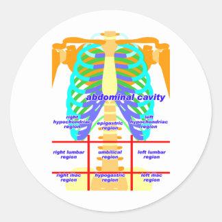 body_abdomina_color round sticker