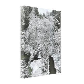 Boeckman Creek in Winter Canvas Print