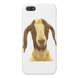 Boer Goat iPhone 5/5S Covers