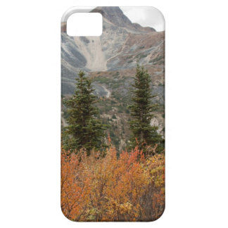BOFR Boreal Friends Case For The iPhone 5