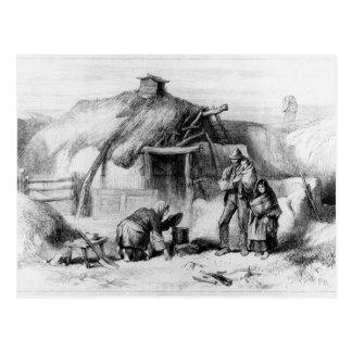 Bog-Trotters Cabin Postcard