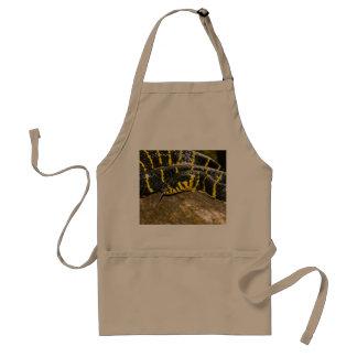 Boiga dendrophila or mangrove snake standard apron