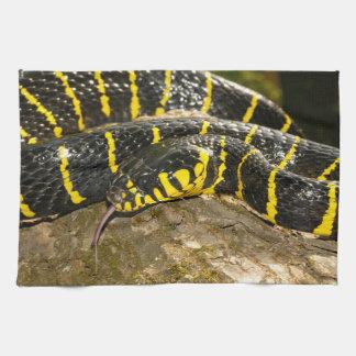 Boiga dendrophila or mangrove snake tea towel