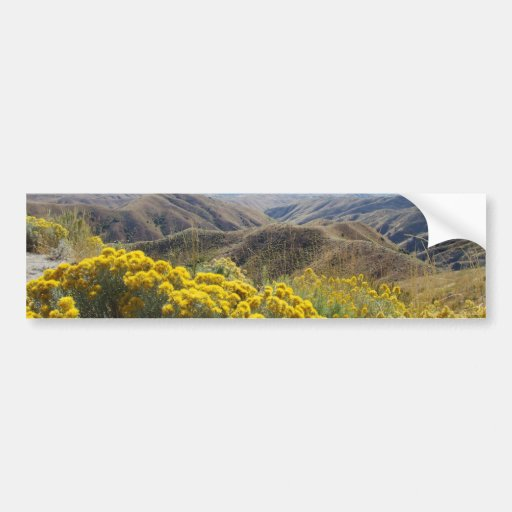 Boise Foothills Bumper Stickers