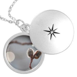 Bokeh Beautiful Round Locket Necklace