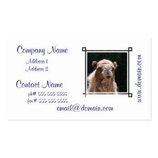 Bold Camel Pack Of Standard Business Cards