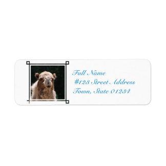 Bold Camel Return Address Label