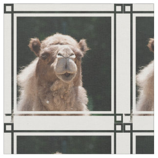 Bold Camel Fabric