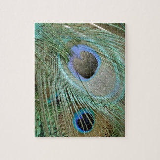 bold peacock eye feathers jigsaw puzzle