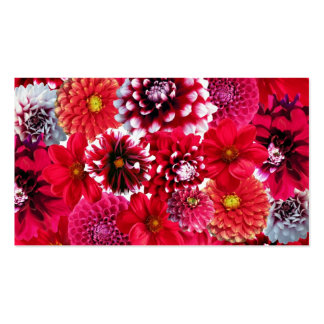 Bold Pink Magenta Dahlia Flowers Floral Collage Pack Of Standard Business Cards