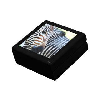 Bold Zebra Gift Box