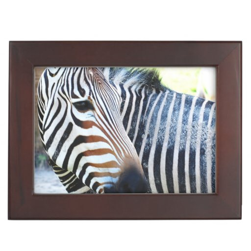 Bold Zebra Memory Box