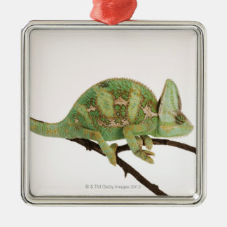 Boldly coloured chameleon with characteristic 2 christmas ornament