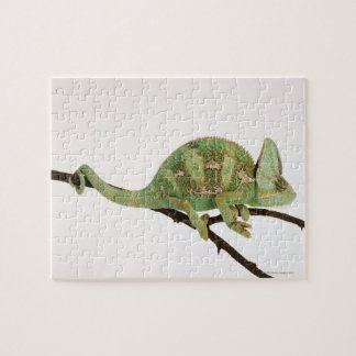 Boldly coloured chameleon with characteristic 2 jigsaw puzzle