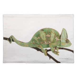 Boldly coloured chameleon with characteristic 2 placemats