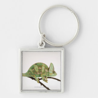 Boldly coloured chameleon with characteristic 2 Silver-Colored square key ring