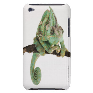Boldly coloured chameleon with characteristic barely there iPod cases