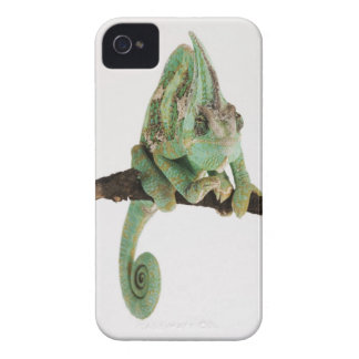 Boldly coloured chameleon with characteristic iPhone 4 Case-Mate case