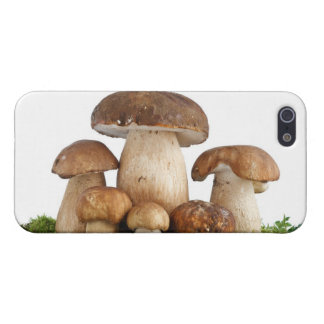 Boletus Edulis mushrooms Case For iPhone 5/5S