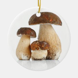 Boletus Edulis var. Aereus Christmas Ornament