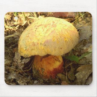 Boletus torosus Mushroom Mouse Mat