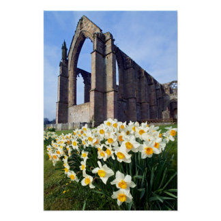 Bolton Abbey, The Yorkshire Dales Poster