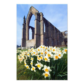 Bolton Abbey, Wharfedale, The Yorkshire Dales Photo Print