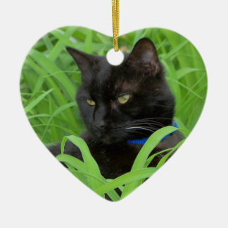 Bombay Black Cat Birthday Ornament