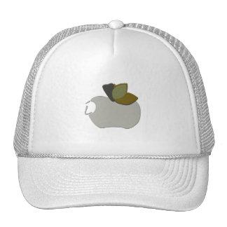 Bombay Grey Apple Cap