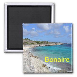 Bonaire magnet