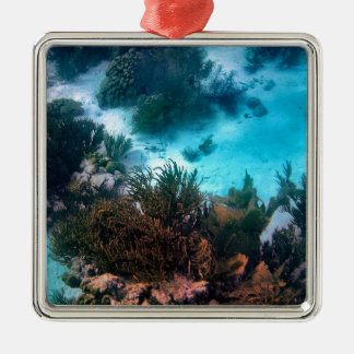 Bonairean Reef Christmas Ornament