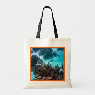 Bonairean Reef Orange Border Budget Tote Bag