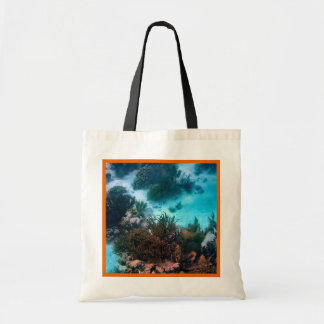 Bonairean Reef Canvas Bag