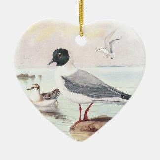 bonaparte,s gull ornaments