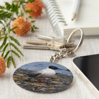 Bonaparte's Gull at the Beach Basic Round Button Key Ring